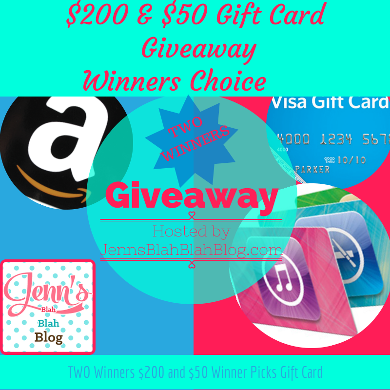 250-Gift-Card-Winners-Choice-Giveaway-1